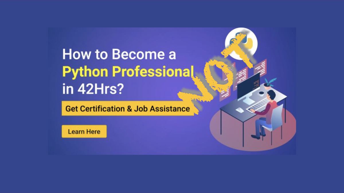 How to become a Python professional in 42 hours?