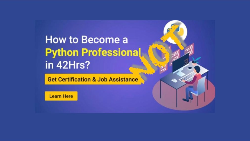 How to become a Python professional in 42hours?